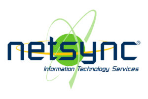 Netsync Information Technology Services